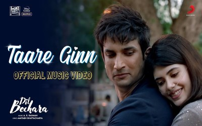 Taare Ginn Lyrics Meaning English-Dil Bechara